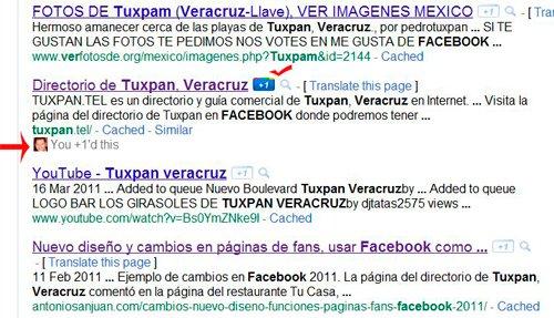 Como se muestra el boton Google +1
